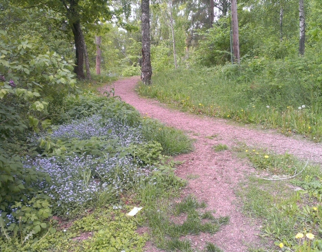 naturprom1