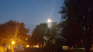 Jordgubbsmåne